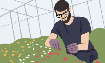 Zierpflanzengärtner Umschulung